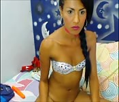 Vanessa Lee porno